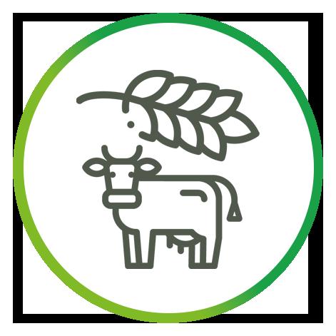 Synérgie cultures-élevages